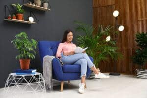 improve home air quality with houseplants