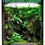tropical rainforest terrarium design